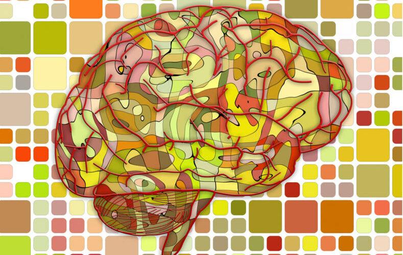 Neurofeedback Heilbronn Ergotherapie